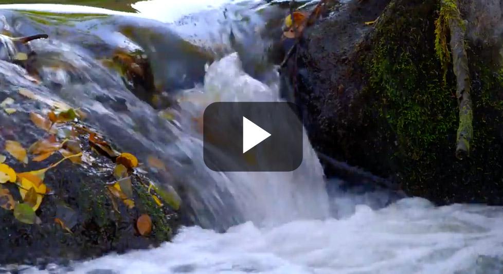 lsr-slide-water